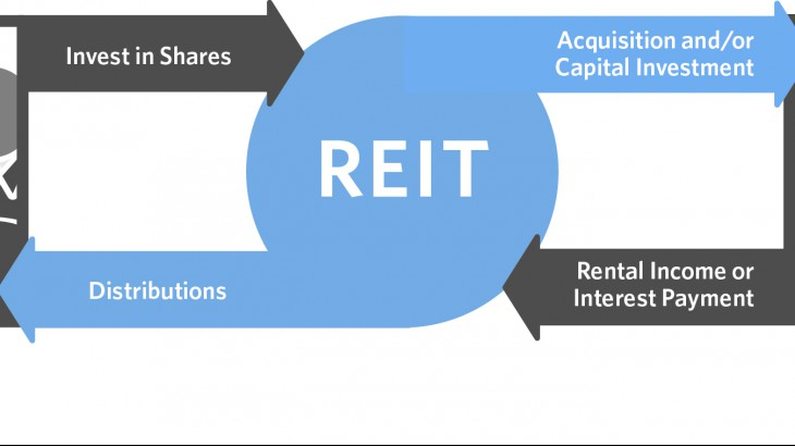Real Estate Reit : Reit versus actual ownership win with real estate